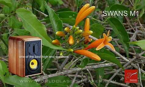 Swans M1 Monitor