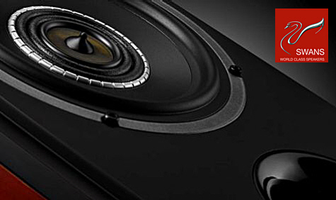 SWANS TS6 - Triaxial-Monitor-Lautsprecher