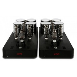 Ayon Audio Titan EVO State of the Art Mono-Endstufe (PaarPreis!)