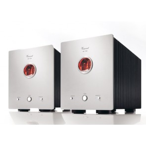 Vincent SP-T700, Hybrid Mono-Endverstärker